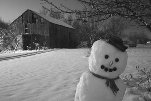 snowmane